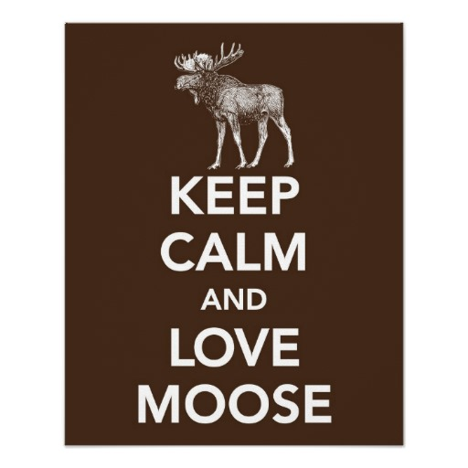 keep_calm_and_love_moose_print_or_poster-rcaa925f4af0e4ba5b4ef03a9e7a73d07_wvc_8byvr_512